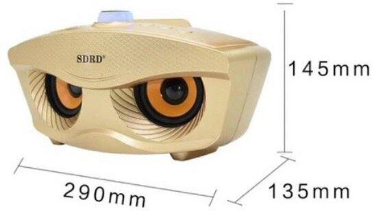 Колонка караоке OWL SDRD SD-306 с двумя беспроводными микрофонами